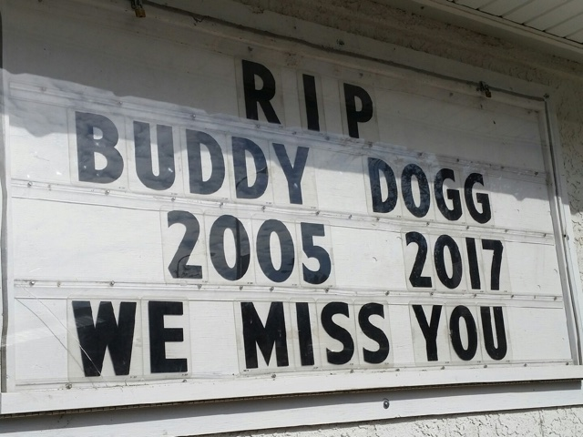 Rest in peace, Buddy